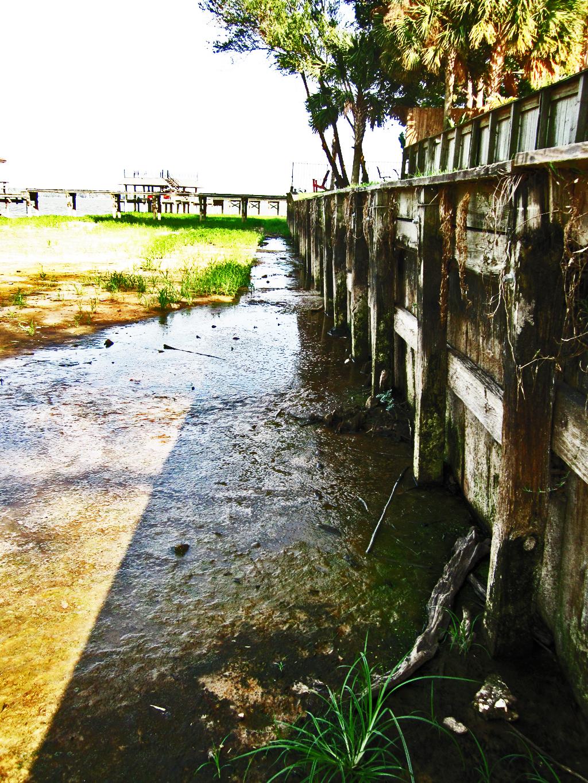 Lake Houston: Stagnant pool in dry lake bed