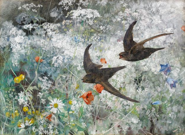 Common Swifts by Bruno Liljefors