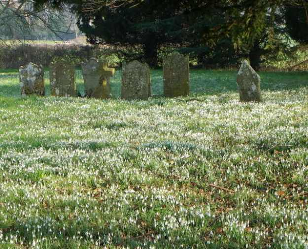 St George's Churchyard, Near Damerham, Hampshire, UK ( © Copyright Miss Steel and licensed for reuse under this Creative Commons Licence.)