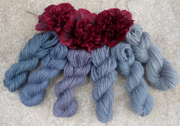 Photo Eight from http://wooltribulations.blogspot.com/2013/08/a-trial-of-hollyhock-petal-dye.html