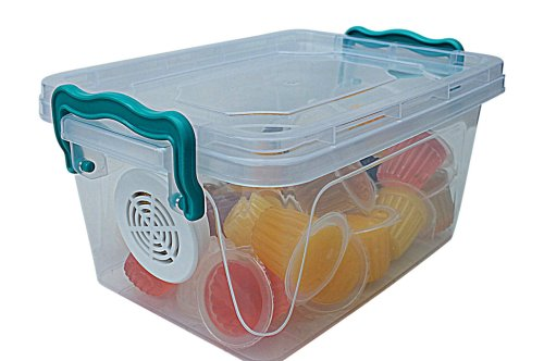 small resolution of  beetle jellies 25 pack beetle box