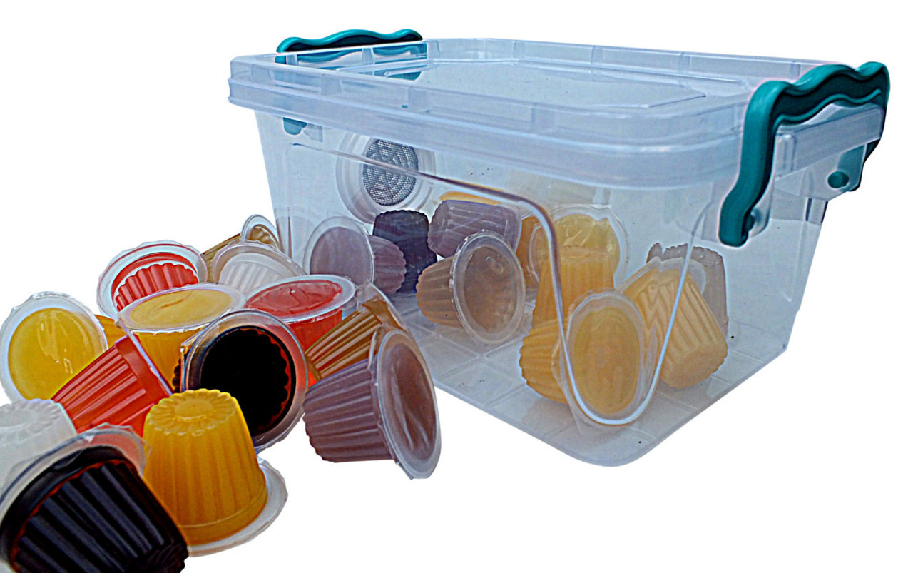 hight resolution of beetle jellies 25 pack beetle box