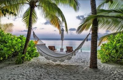 Ежегодный оплачиваемый отпуск: длительность, порядок его предоставления, как правильно оформить