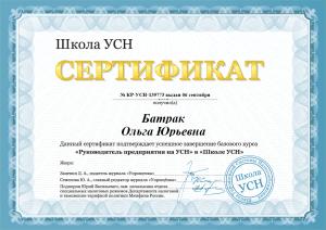 Сертификат Руководитель предприятия на УСН.