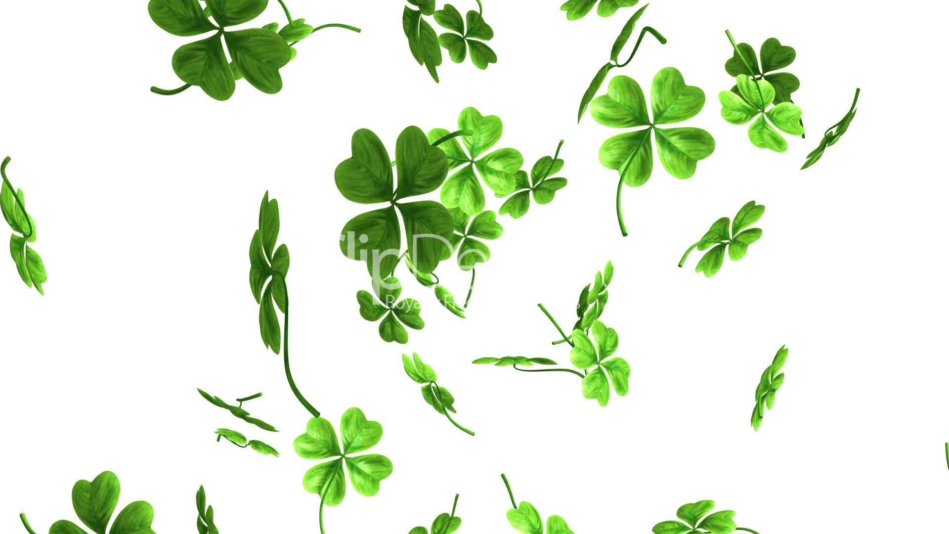 Falling Leaves Animated Wallpaper Falling Shamrock Leaves Royalty Free Video And Stock Footage