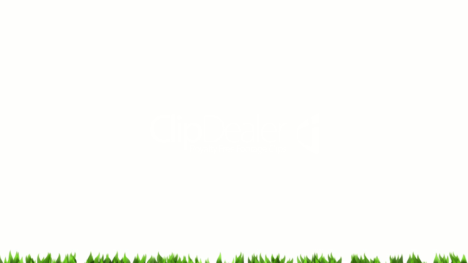 Green Grass On White Background. Matte Channel.: Royalty