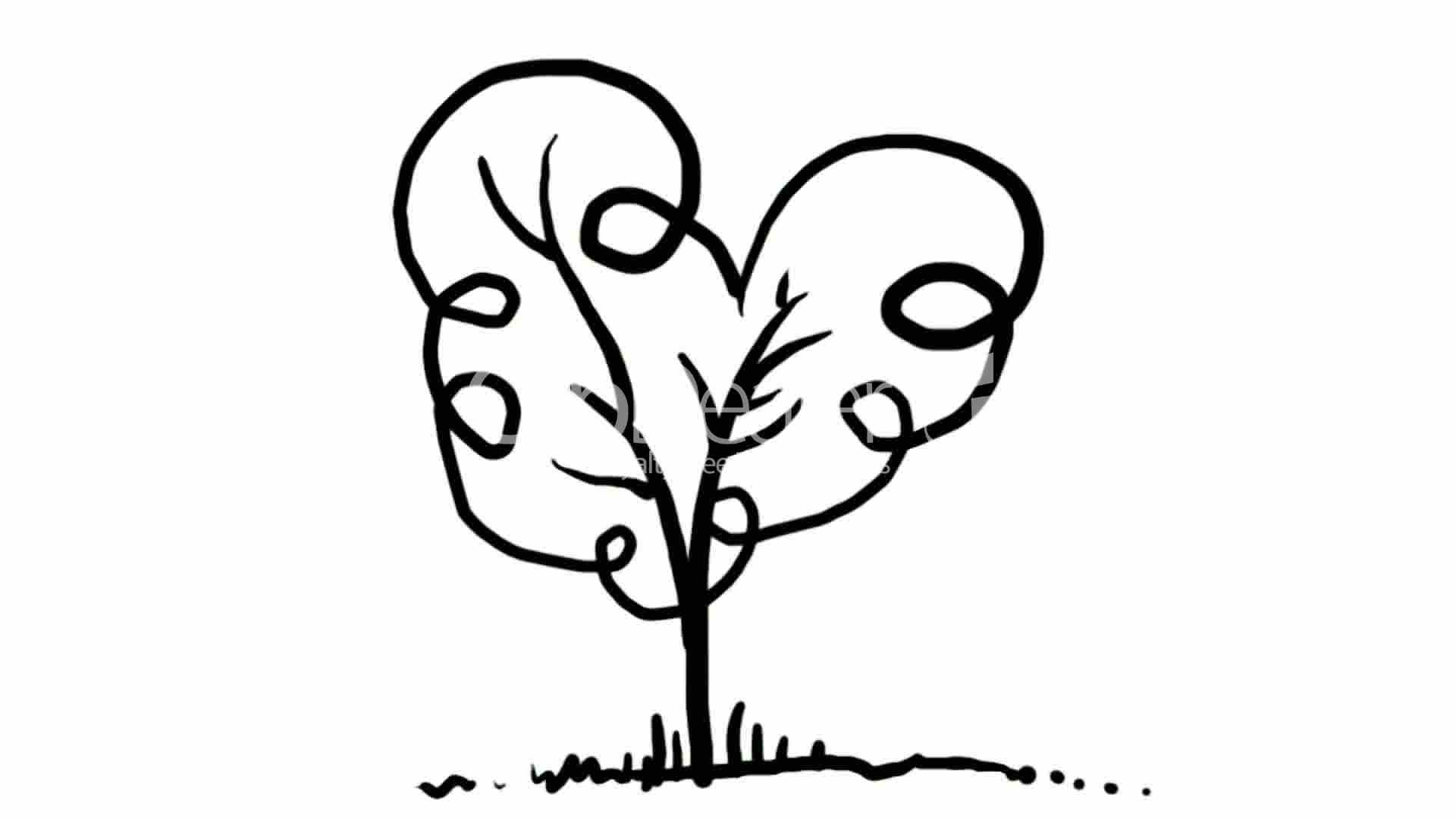 drawing of tree,Hand painting video material,sketch