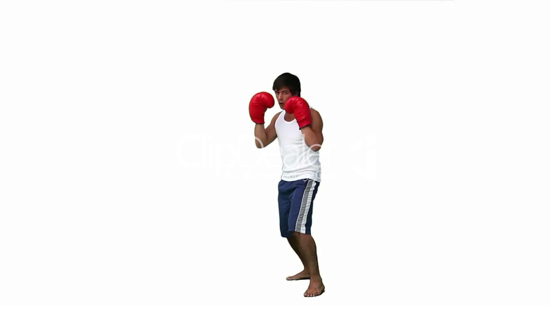 Kickboxer Royalty Free Video And Stock Footage