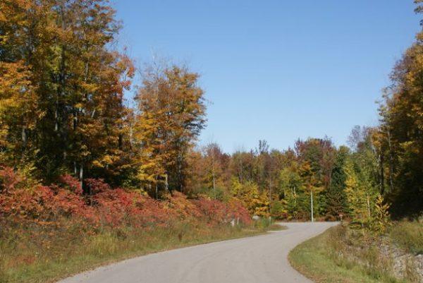 Cedar Ridge Now You Re Home Ontario Home Builders