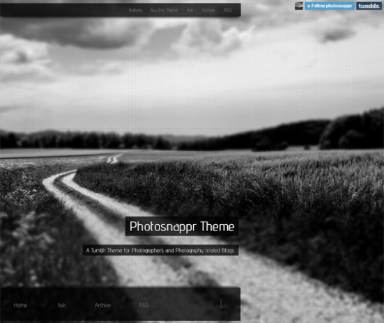 photosnappr dark tumblr theme