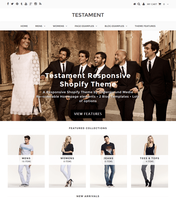 testament clean shopify themes