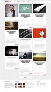Blogdrops - Infinite Blogging Theme