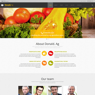 Agriculture Joomla Template (Joomla theme for agriculture and farms) Item Picture