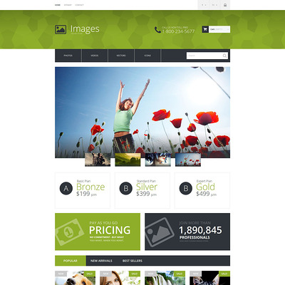 Art Photography PrestaShop Theme (PrestaShop theme for stock videos and images) Item Picture