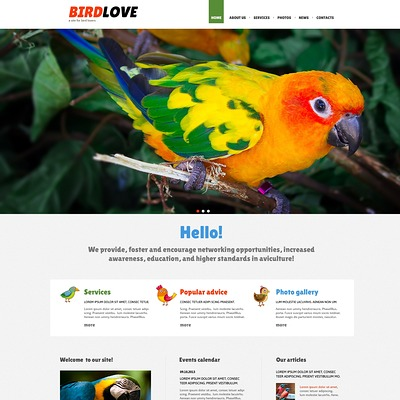 Birds Responsive Joomla Template (Joomla template for websites about pets and animals) Item Picture