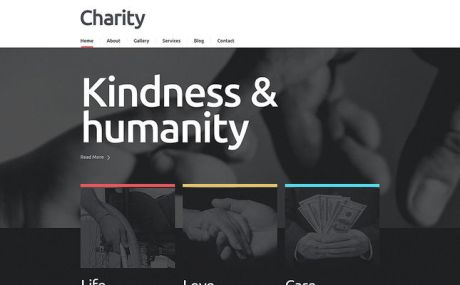 Charity Responsive WordPress Theme (charity WordPress theme) Screenshot