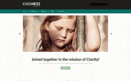 Child Charity WordPress Theme (charity WordPress theme) Screenshot
