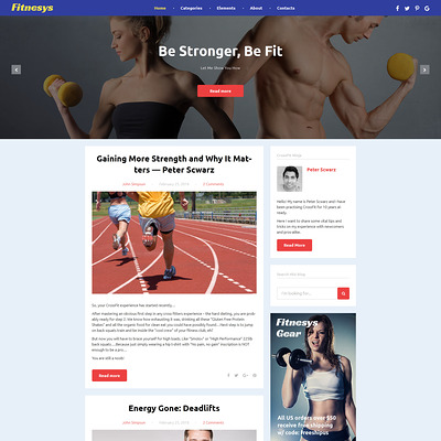 Fitnesys (WordPress theme for gym and fitness) Item Picture