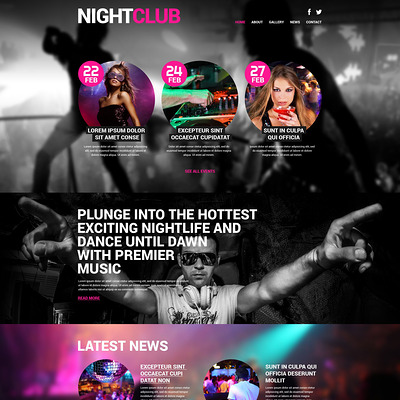 Night Club Euphoria WordPress Theme (WordPress theme for night clubs) Item Picture
