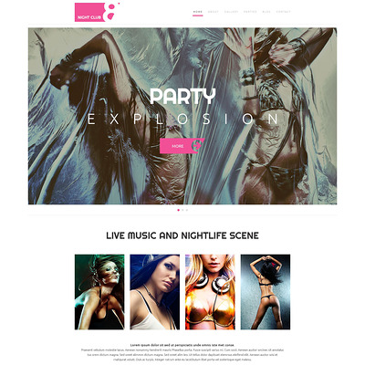 Night Club WordPress Theme (WordPress theme for night clubs) Item Picture
