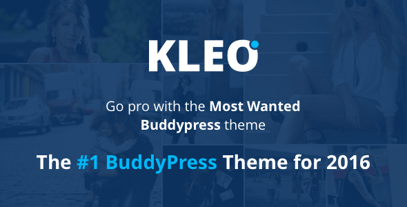 KLEO (WordPress theme) Item Picture