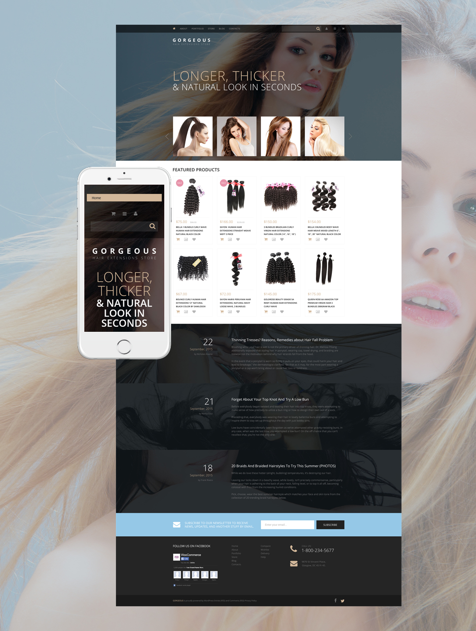 Hair Extensions (template for WooCommerce) Item Picture