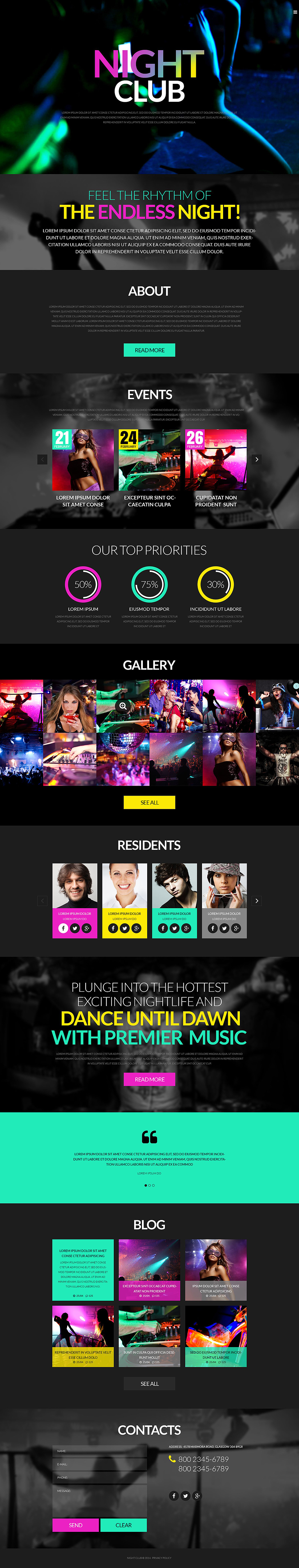 Night Club & Party (WordPress theme) Item Picture