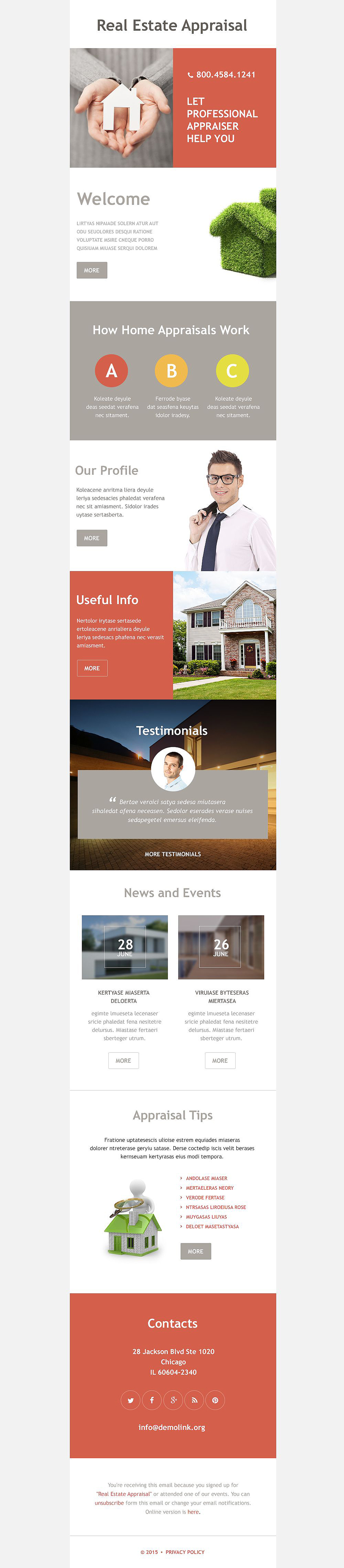Real Estate Agency (newsletter template) Item Picture