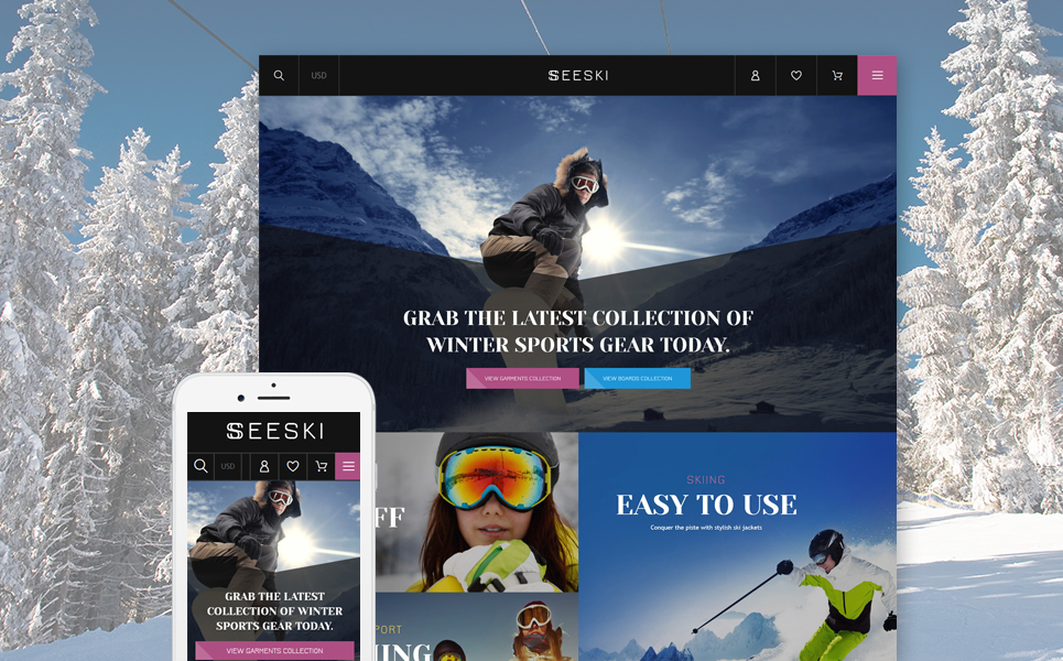Skiing Supplies (ecommerce website theme) Item Picture