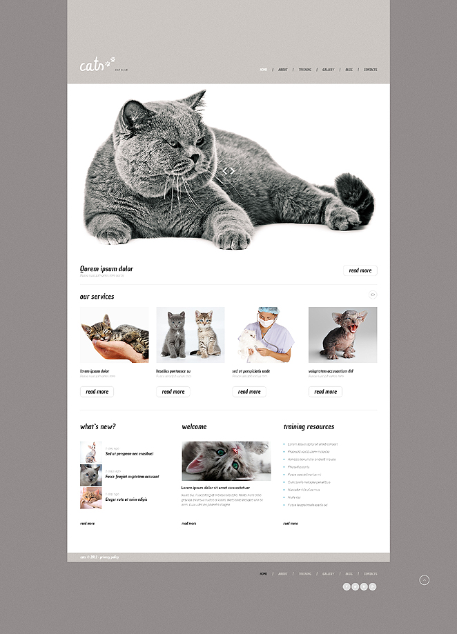 Cat (theme for WordPress) Item Picture