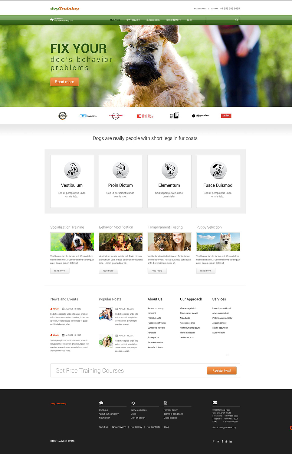 Dog Trainer (template) Item Picture