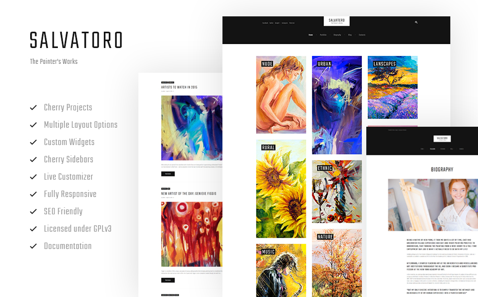 Salvatoro (WordPress theme) Item Picture