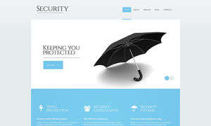 Security Firm
