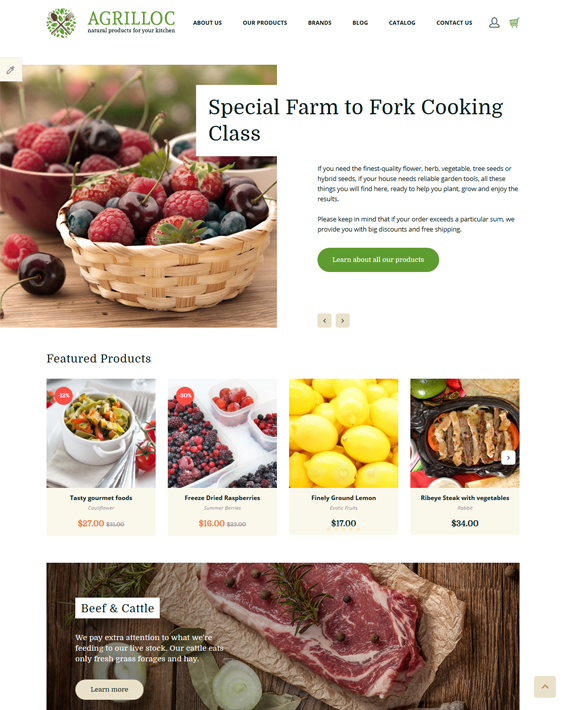 opencart themes for food stores