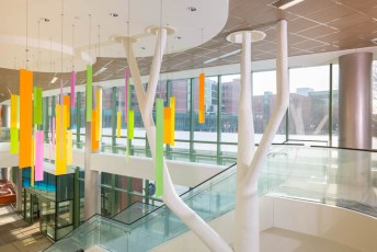 Inspired by a child's natural play environment, our 7-story Kay Jewelers Pavilion represents a different aspect of a backyard, with paint, carpeting, flooring, graphics and artwork to support the them. Picutre here is the main lobby on the 3rd floor with colorful, hanging art that represents leaves on a tree.