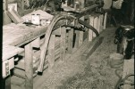 The aft end of the keel has a slight bend. The form used to steam bend it is seen on the floor under the keel