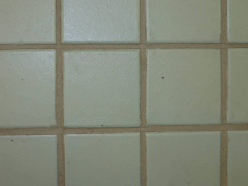 How to Recolor Old Grout