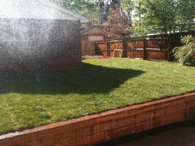 New retaining wall and sod