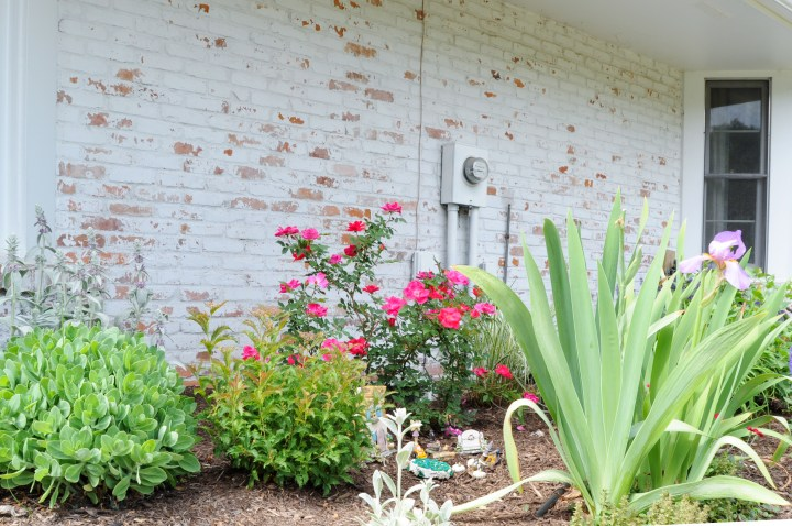 How to camouflage an ugly electrical meter with paint and perennials | Building Bluebird #diy #englishgarden #gardening