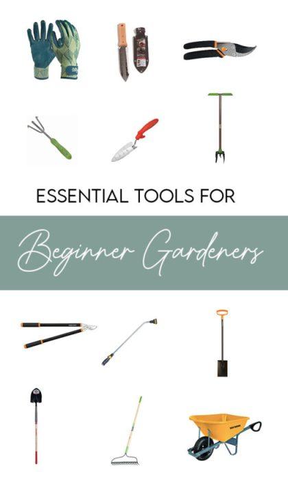 My favorite tools to recommend to beginner gardeners | Building Bluebird #greenthumb #englishgarden #gardening #pottedplants