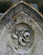 Cemetery 25 Loring