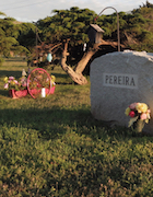 Cemetery 24 Pereira Richard & Alfred.jpg
