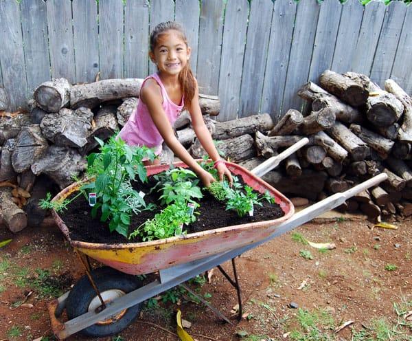 herb-garden-planting