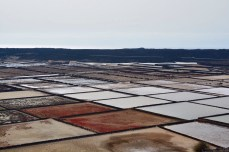 The Salinas are one of several salt fields on Lanzarote, another agricultural heritage site.