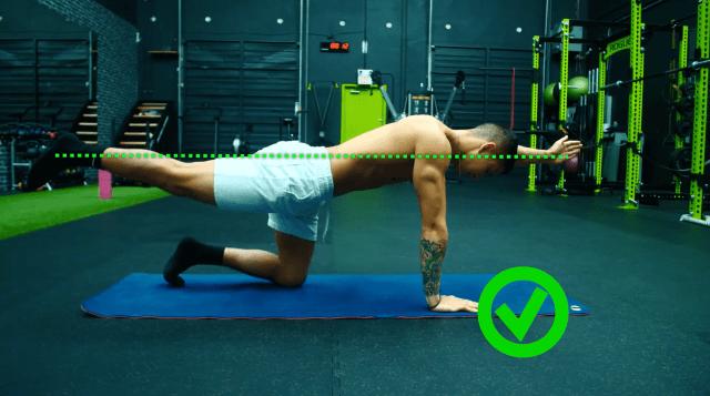 How to perform bird dog 3-min