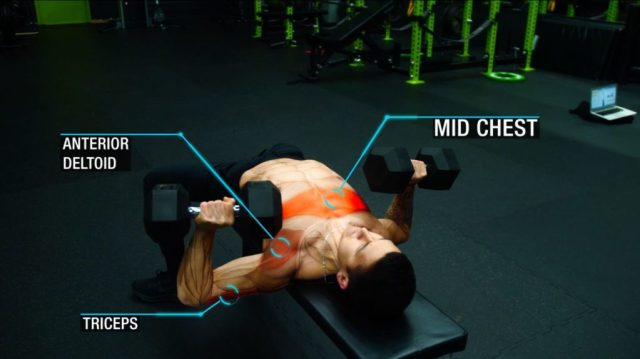 Push day workout flat dumbbell press