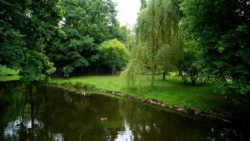 Park Julianowski w Łodzi