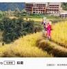 Xiaomi Mi CC9 Pro camera samples