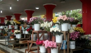 Usaha toko bunga