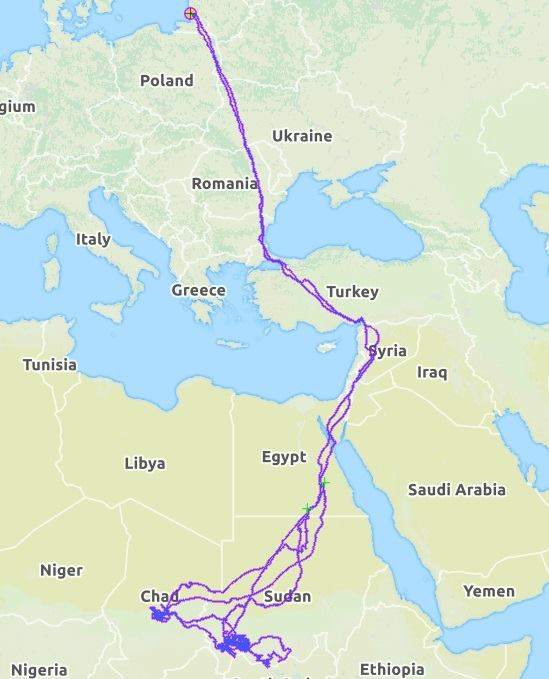 Gandrai žemėlapis